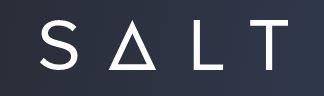 salt loga